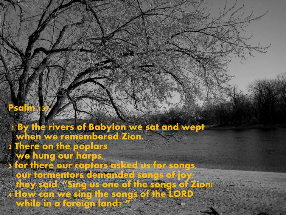 psalm-137