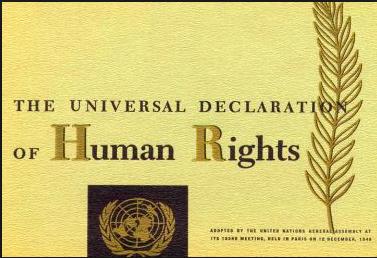 Prova di cultura generale: da dove proviene la dichiarazione universale dei diritti dell'uomo?