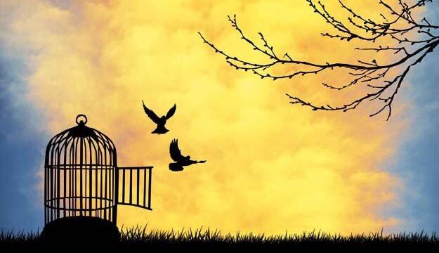 Sai cosa rispondere a tuo figlio quando ti  domanda il significato della parola libertà?