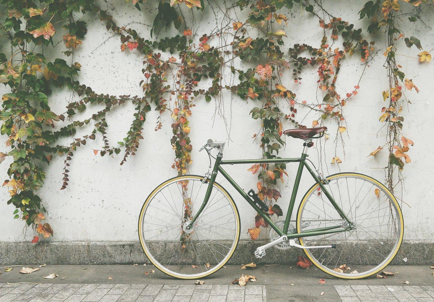 Quei momenti della vita in cui il tuo sogno più grande è un giro in bicicletta